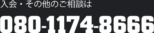 08011748666