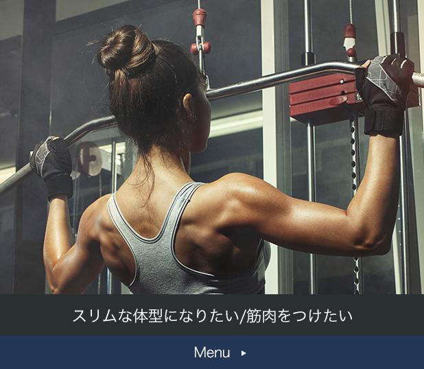 スリムな体型になりたい/筋肉をつけたい